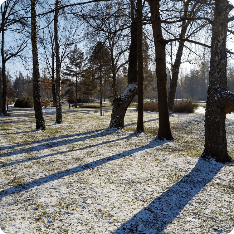 nokia 7.1 krajobraz