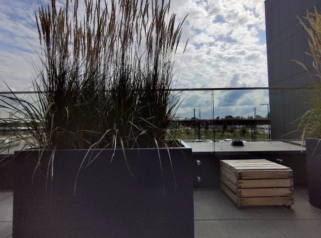 Asus Zenfone 6 zdjęcie szerokokątne w trybie HDR+