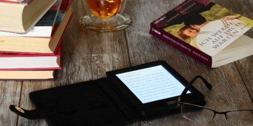 Sposób na nudę. Czytnik i ebook, czyli najlepsi partnerzy na wszystkie 365 dni w roku