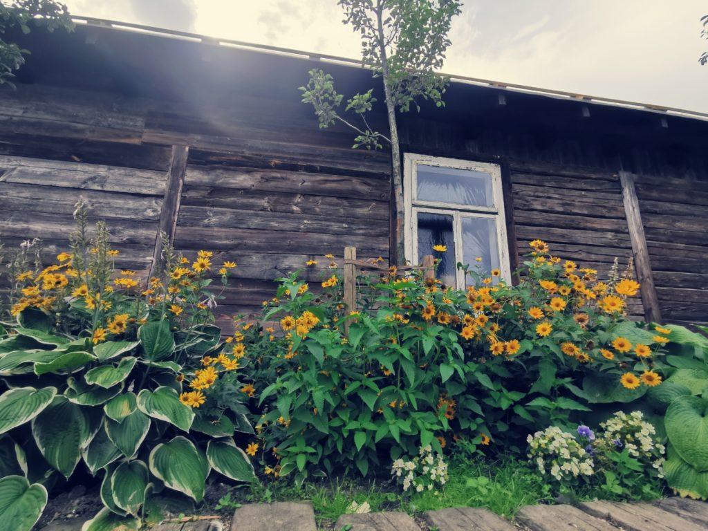 Huawei Mate 20 zdjęcie domu
