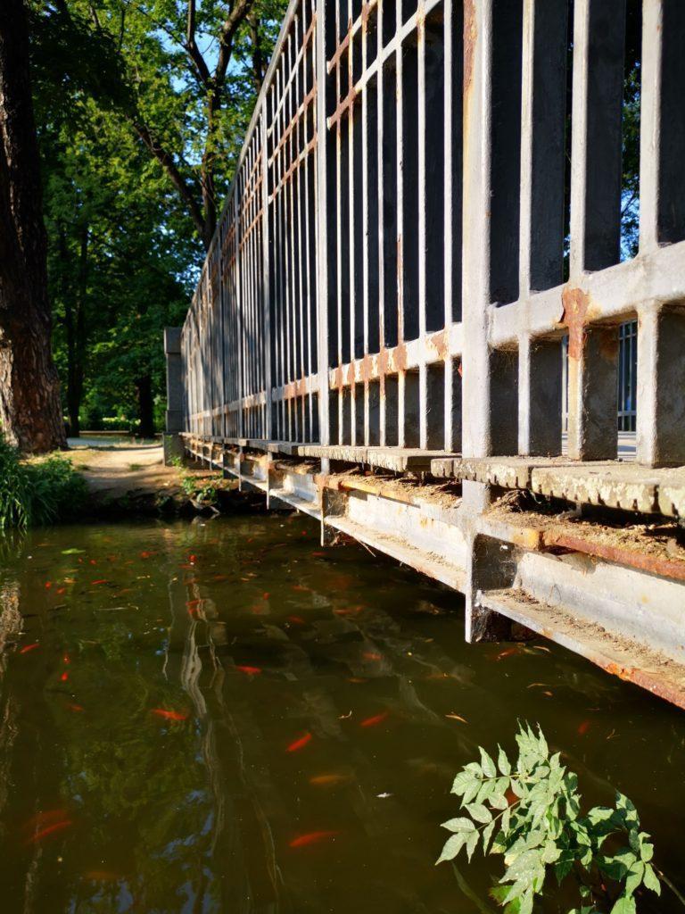 Huawei Mate 20x zdjęcie parku nad wodą