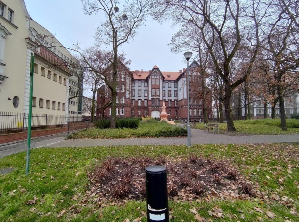 Zdjęcie z ASUS ROG Phone II Poznań, park
