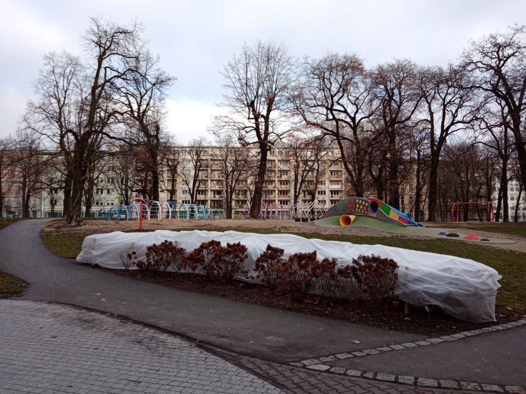 Zdjęcie z Huawei Y6s Poznań park