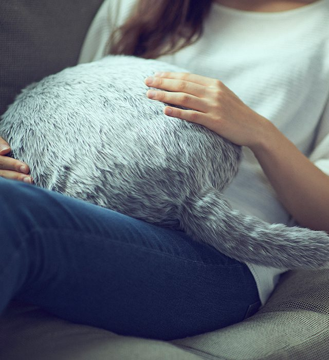 qoobo poduszka terapeutyczna