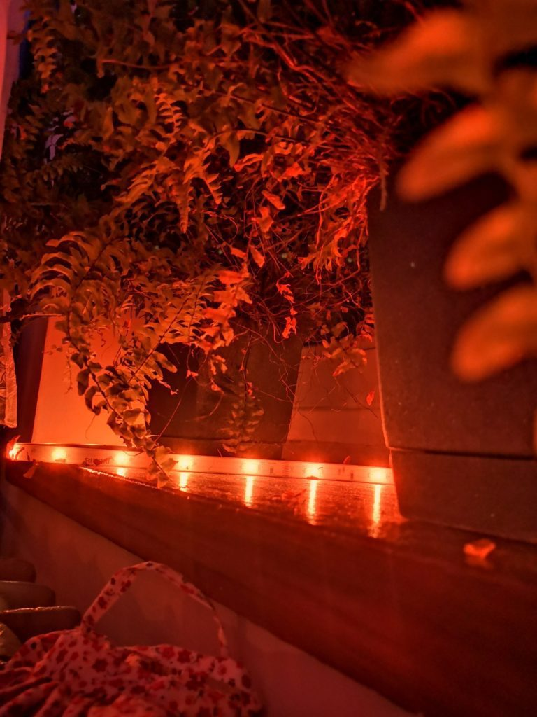 taśma led Philips Hue świeci na czerwono