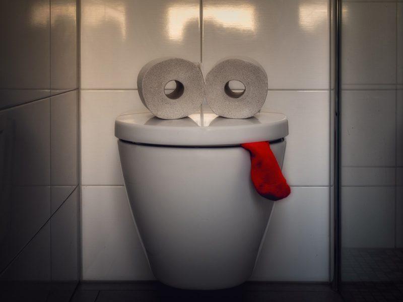 Śmierdząca sprawa: inteligentna toaleta, która rozpoznaje Twój tyłek i analizuje kupę pod kątem chorób