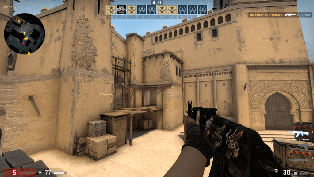 screen z gry CS:GO karabin
