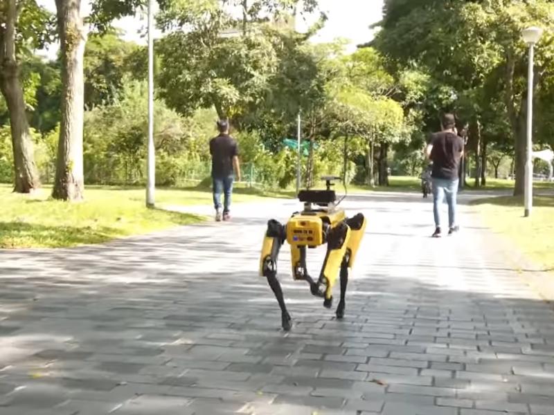 Pies-robot od Boston Dynamics patroluje teren parku w Singapurze