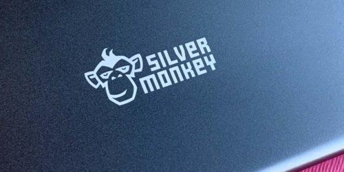 Stacja dokująca USB-C Silver Monkey — recenzja