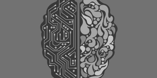 Czy sztuczna inteligencja śni o elektrycznych owcach? Naukowcy odkryli, że nawet AI potrzebuje się zdrzemnąć, żeby nie zwariować