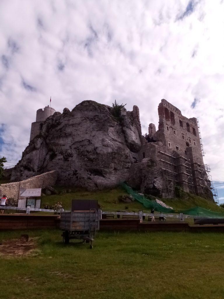 zdjęcie zamku w ogrodzieńcu