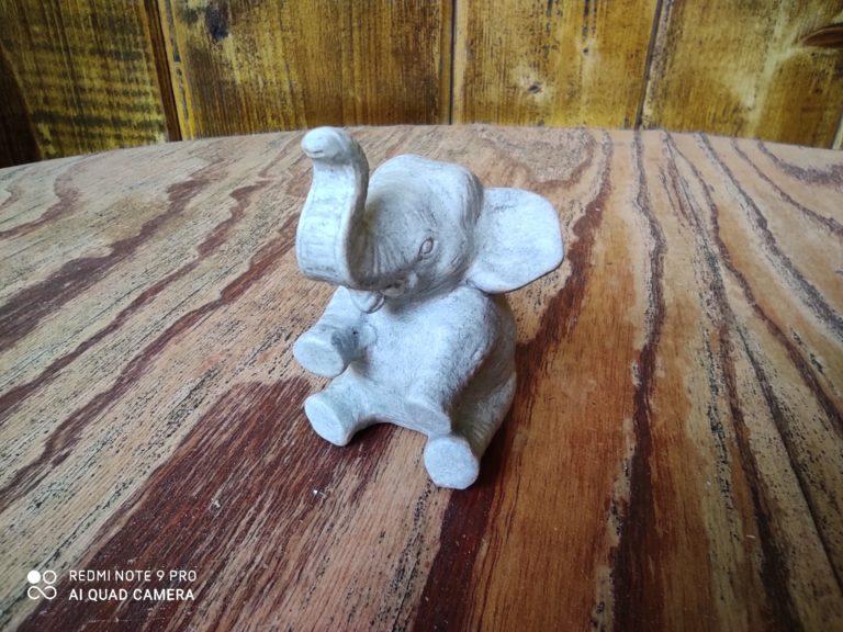 zdjęcie słonia makro Redmi Note 9 Pro