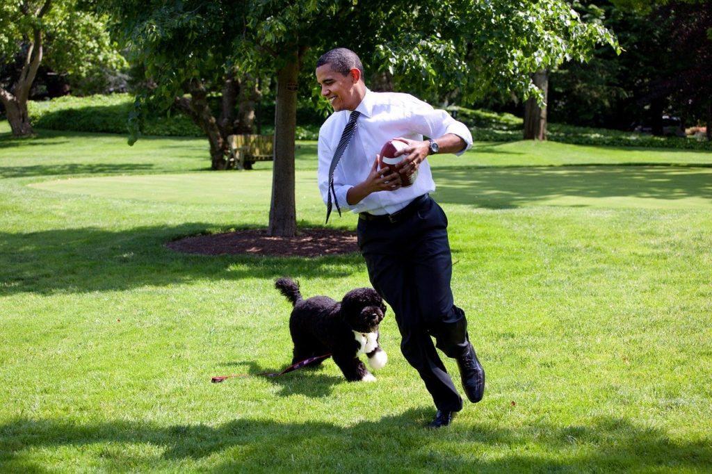 barack obama z psem