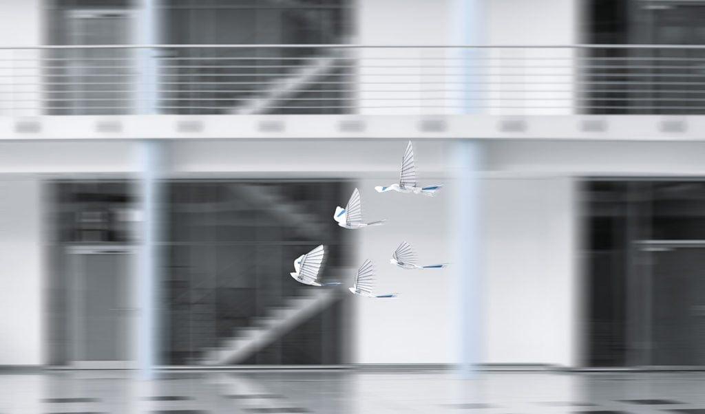 Bioniczne robo-ptaki BionicSwift