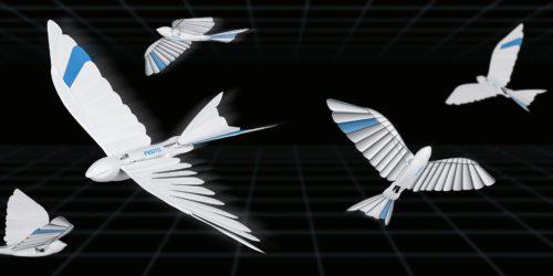 Czy to jaskółka? Wróbel? Może gołąb? Nie, to bioniczny ptak prosto z Niemiec