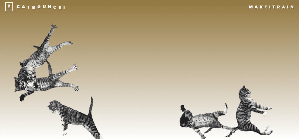 skaczące koty