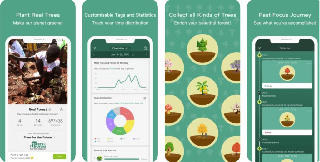 aplikacja forest