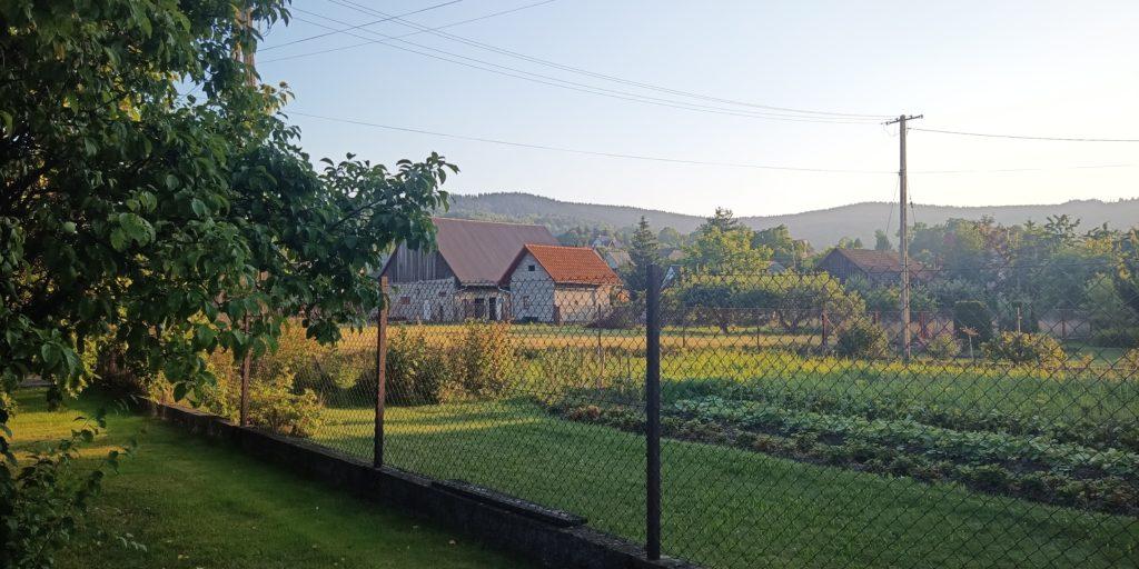 zdjęcie krajobrazu oukitel wp7