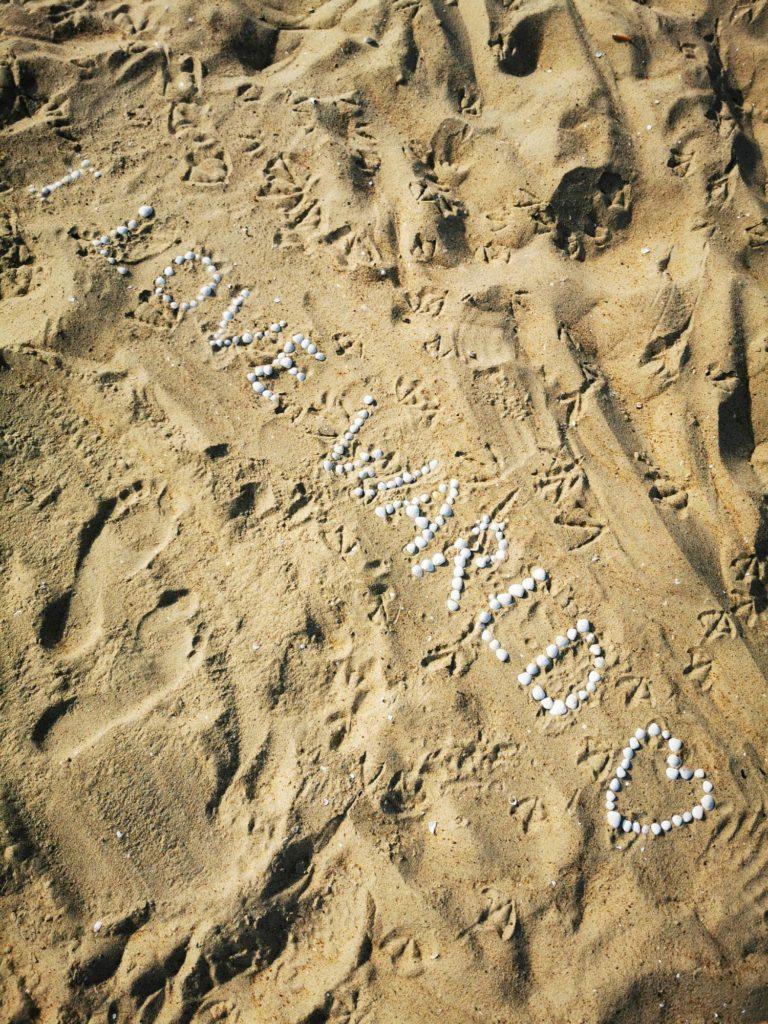 P30 Pro zdjęcie muszelki na piasku