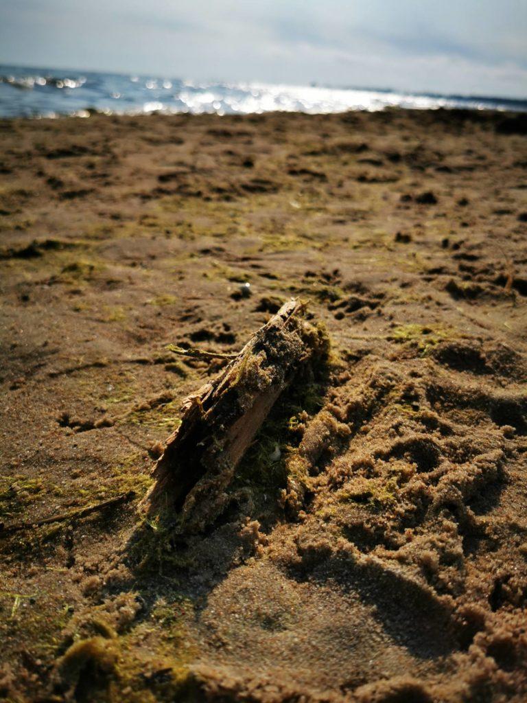 P30 Pro zdjęcie przysłona patyk na piasku