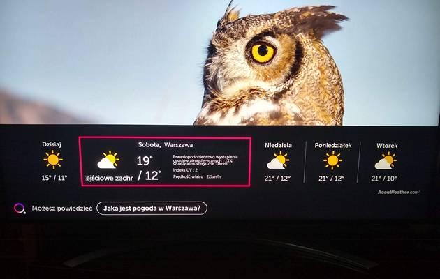 Zalety i wady systemu LG webOS
