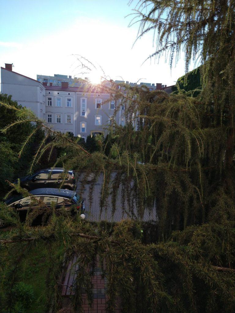budynki i drzewa fotografia moto g pro