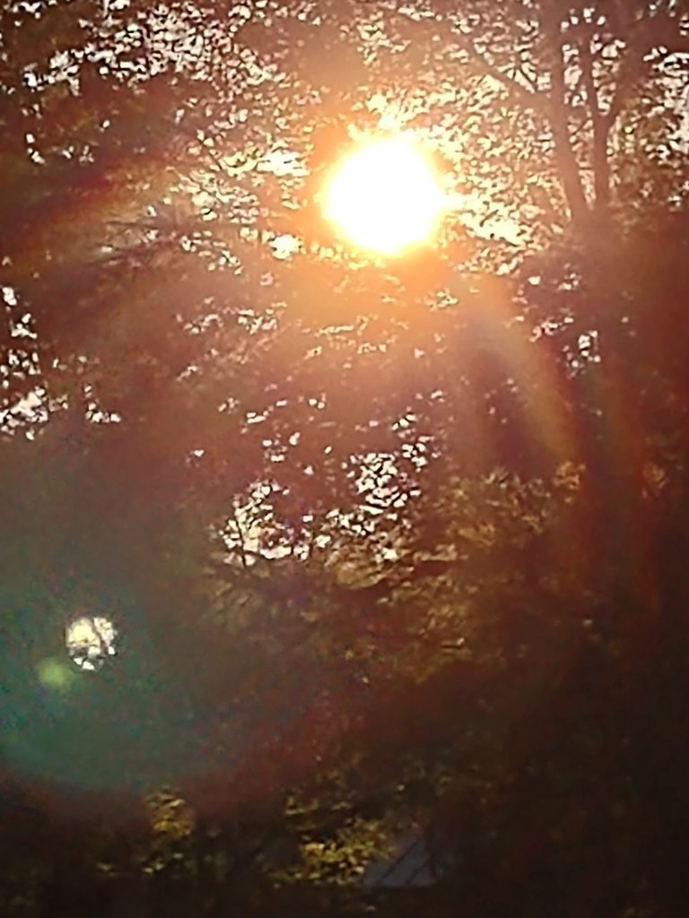 moto g 5g plus zoom słońce