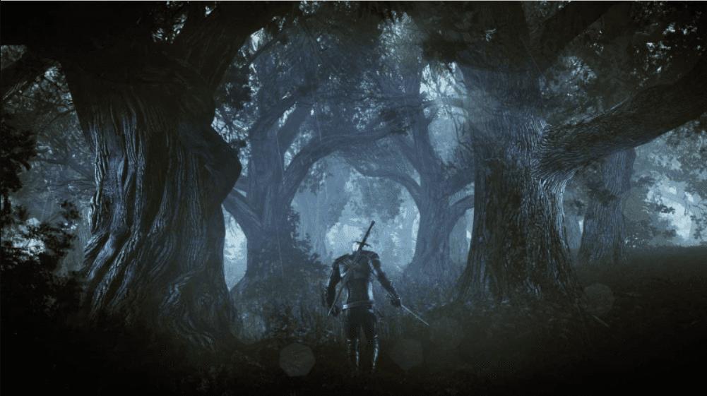 Wiedźmin 3 screenshot