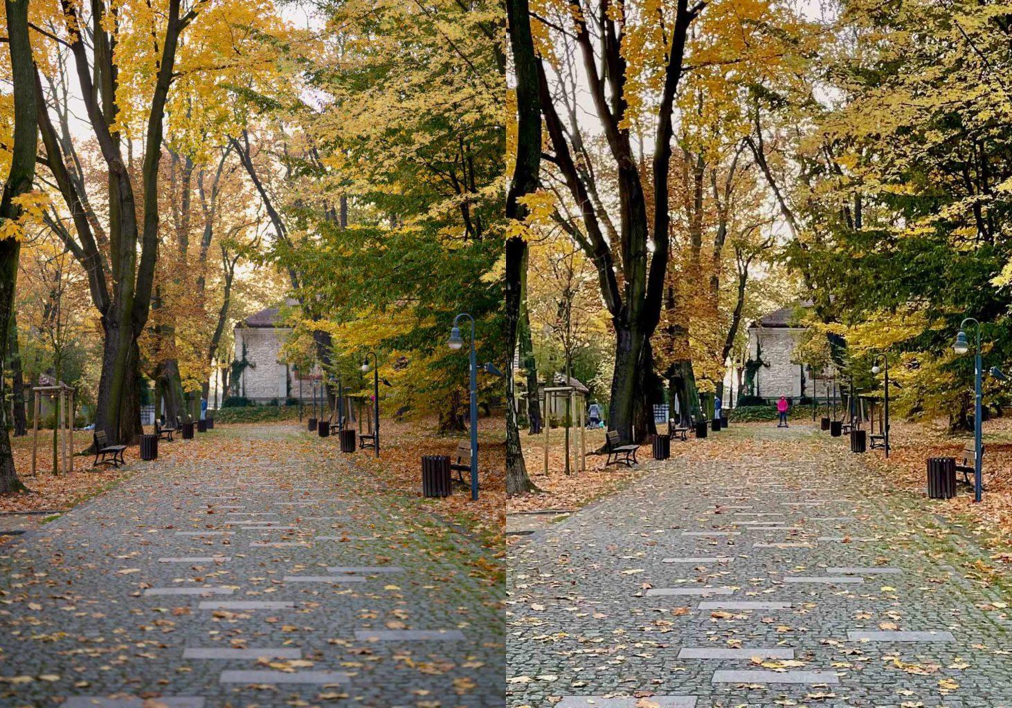 park alejka jesień