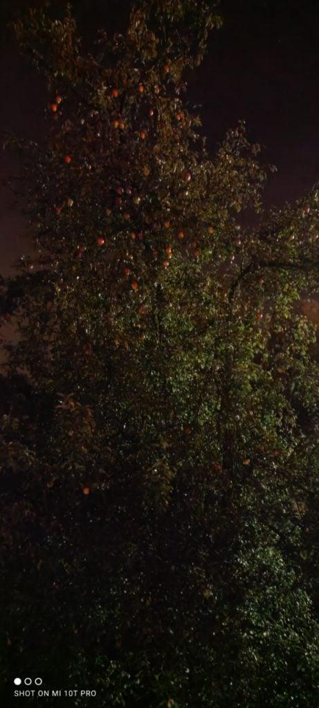 Xiaomi Mi 10T Pro tryb nocny