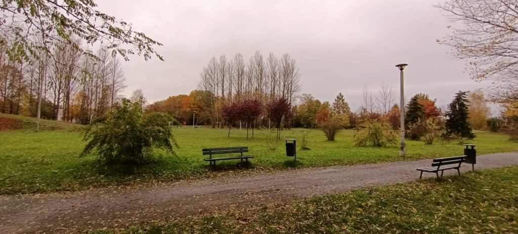 oppo reno4 lite zdjęcie parku wykonane obiektywem szerokokątnym