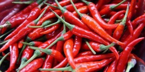 Jak ostra jest Twoja papryczka chili? Powstało urządzenie, które pomoże to sprawdzić, zanim jej spróbujesz