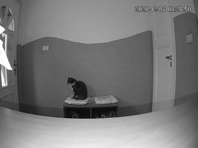 Tryb nocny kamery Imou Cue