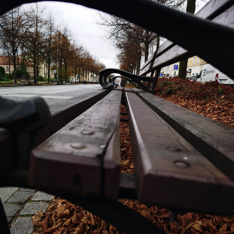 Huawei Mate 40 Pro zdjęcie ławka w alejach