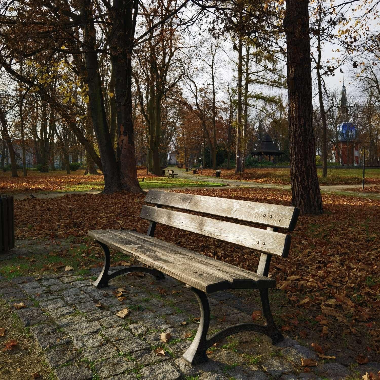 Huawei Mate 40 Pro zdjęcie ławka w parku