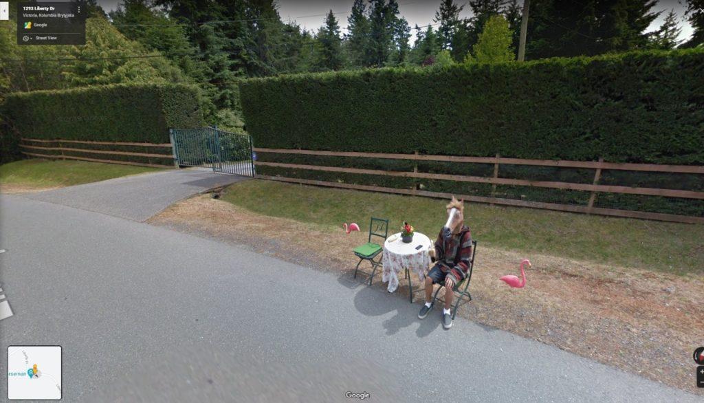 koń Google Street View