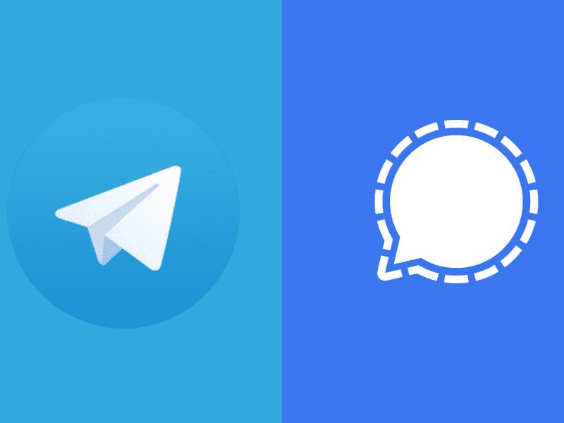 Signal i Telegram – komunikatory rosnące w siłę