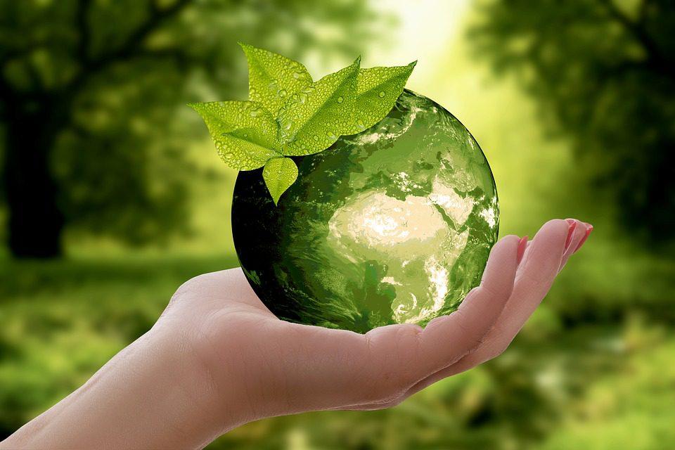 Dzień ziemi 2021 ekologia recykling