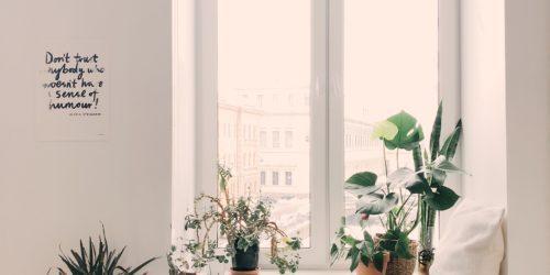 Jak oszczędzać prąd będąc na wakacjach? Poznaj sprytne eko rozwiązania dla Twojego domu