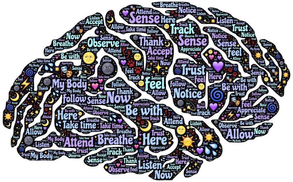 mózg medytacja ciekawe fakty