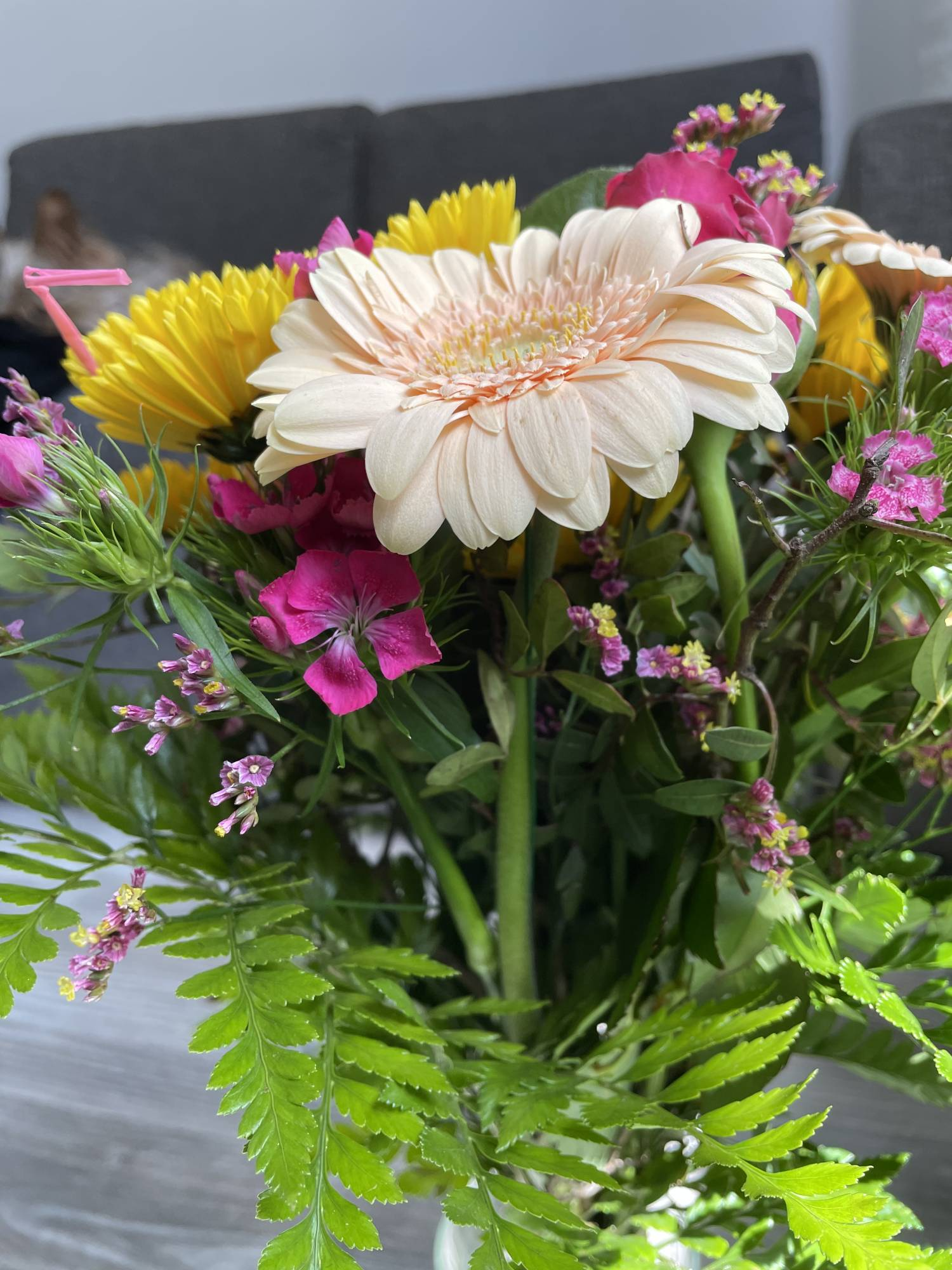 iPhone 12 - zdjęcie kwiatów