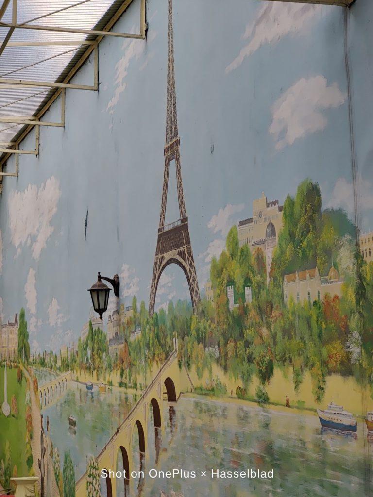 mural w teleobiektywie OnePlus 9 Pro
