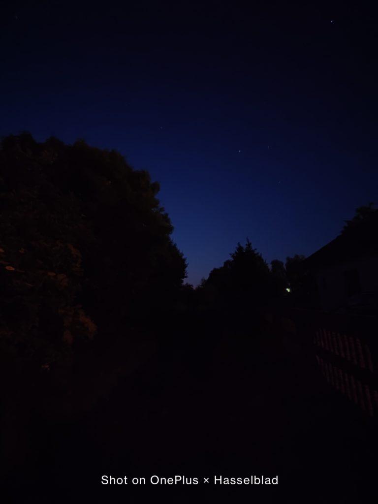 las w obiektywie ultraszerokokątnym w trybie nocnym OnePlus 9 Pro