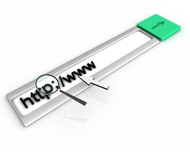 wyszukiwarka