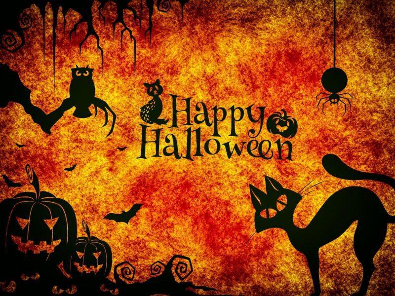 Halloween 2021 – czym jest święto duchów i kiedy wypada? Poznaj pomysły na spędzenie tego dnia